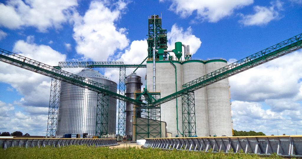 grain services, our grain team, grain marketing